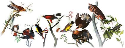 Google Logo: 226th Birthday of John James Audubon - French-American ornithologist, naturalist, hunter, and painter.